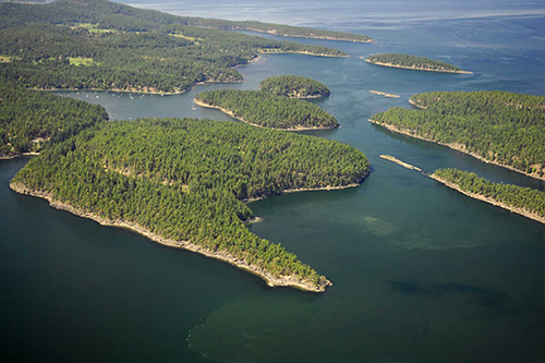 Consider, that dick dale on salt spring island opinion